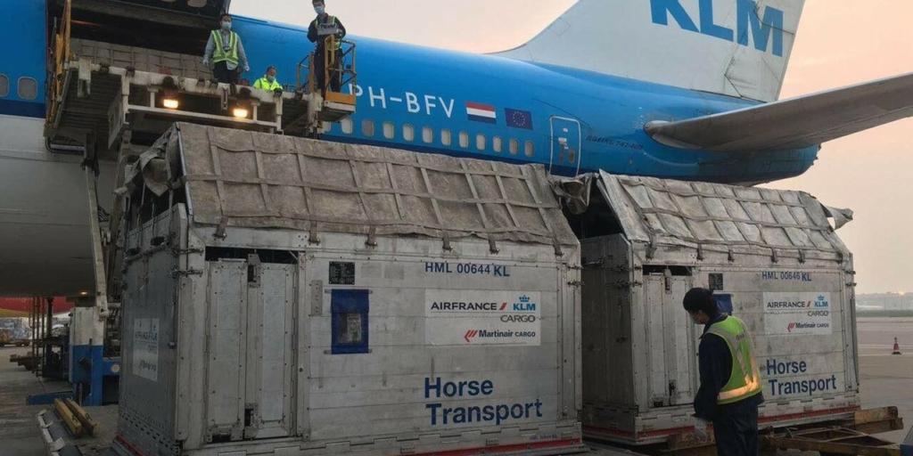 Noticias de aerolíneas. Noticias de aviones. Noticias de aeropuertos. Carga de un avión de KLM