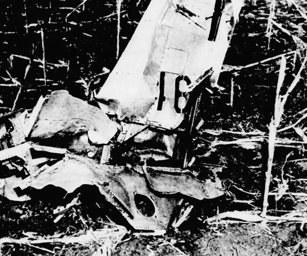 Noticias de aviones. Noticias de aviación. Restos del F-51 de Thomas Mantell
